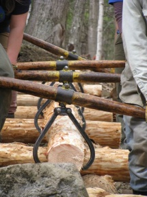 Timber carriers_II