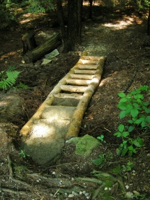 Hemlock timber steps