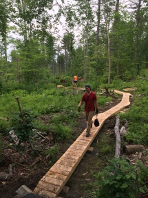 Single track boardwalk