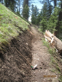 Trail reconstruction