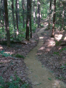 New singletrack trail.