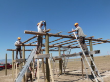 Framing shade structures.