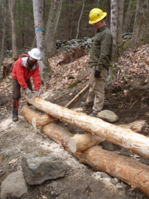 Log fitting