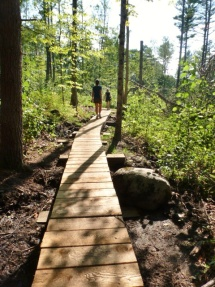 Boardwalk for trails.
