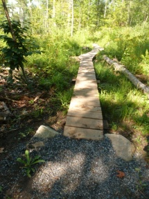 Boardwalk for bike trail.
